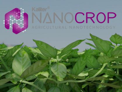 Nanobioestimulantes: Herramientas revolucionarias en tamaño nanométrico