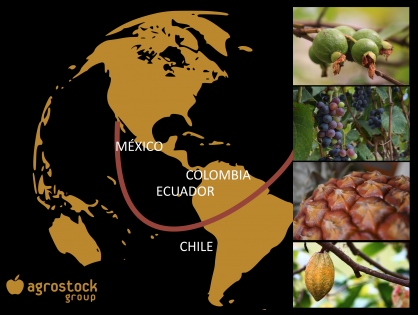 Agrostock Group afianza su presencia en Latinoamérica.