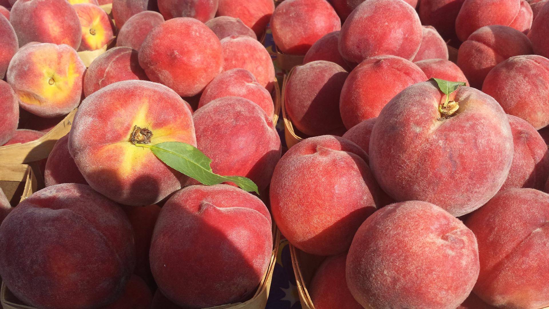Mejora la vida postcosecha de la fruta con aplicaciones de calcio en campo.